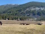 2918 Pine Creek Road - Photo 3
