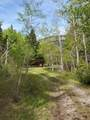 5436 Dearborn Canyon Road - Photo 158