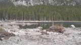 20 & 1380 Glacier View Drive - Photo 100