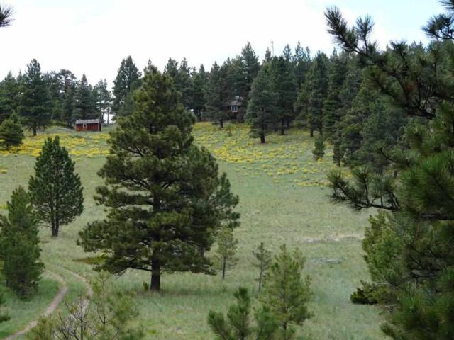 TBD French Creek Rd, Wolf Creek, MT 59648 (MLS #1298262) :: Andy O Realty Group