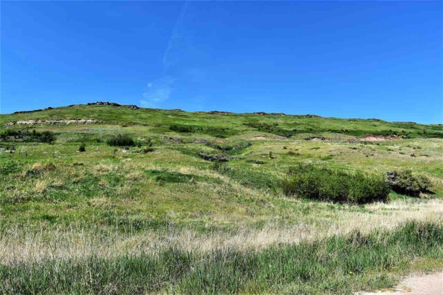 Nhn Buffalo Run Road, Belt, MT 59412 (MLS #1298417) :: Dahlquist Realtors