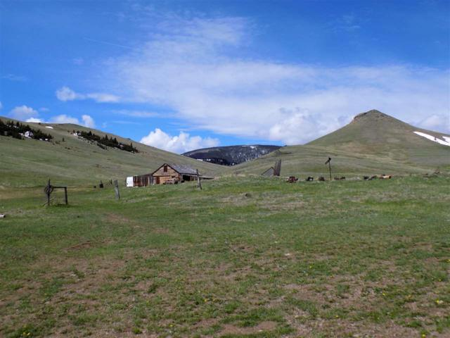 141 Forest Lake Rd, Martinsdale, , MT 59053 (MLS #1301991) :: Brett Kelly Group, Performance Real Estate