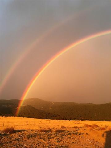 115 Oasis Road, Boulder, MT 59632 (MLS #1302475) :: Keith Fank Team