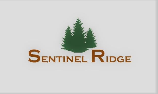 Sentinel R Lot C13, Jefferson City, MT 59638 (MLS #1302690) :: Keith Fank Team