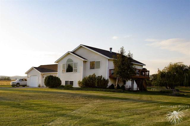 1100 Yuri Road, Helena, MT 59602 (MLS #1302993) :: Keith Fank Team