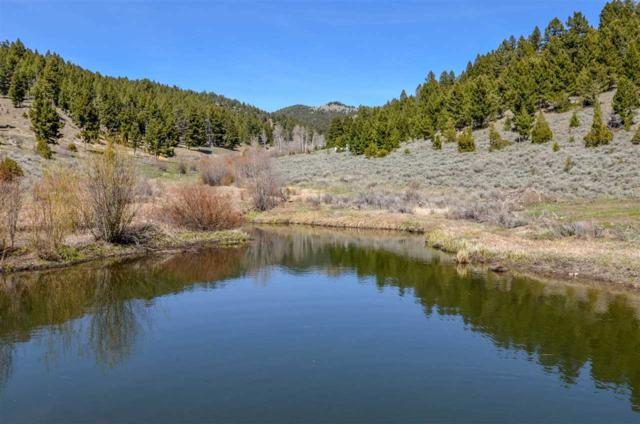 Tbd Big Limber Gulch, Basin, MT 59631 (MLS #1303198) :: Keith Fank Team