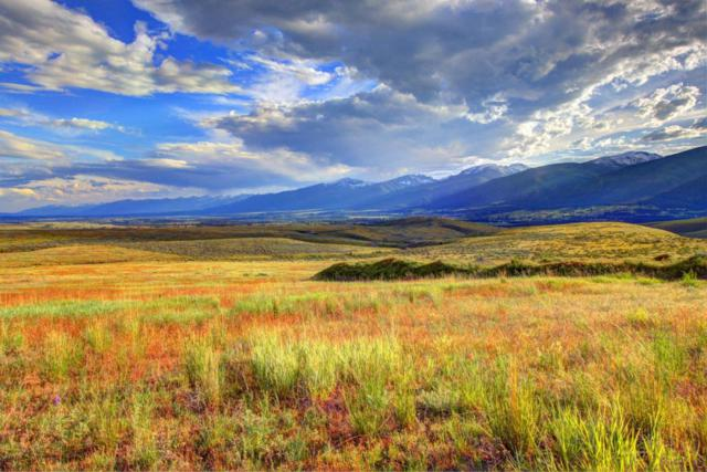 Tract 28 Red Quill Ranch, Florence, MT 59833 (MLS #21707900) :: Loft Real Estate Team