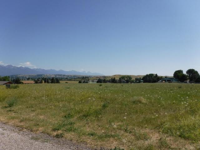 40223 Briarwood Circle, Polson, MT 59860 (MLS #21709196) :: Loft Real Estate Team