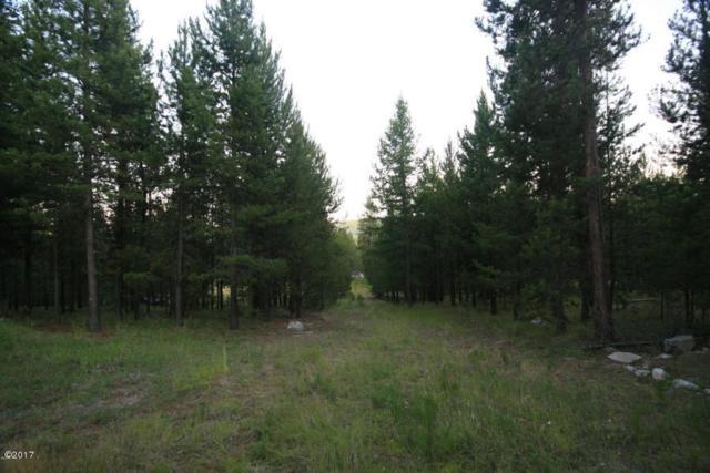 187 Bear Cat Trail, Marion, MT 59925 (MLS #21710561) :: Loft Real Estate Team