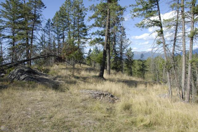 200 Bear Hollow Drive, Bigfork, MT 59911 (MLS #21710630) :: Loft Real Estate Team