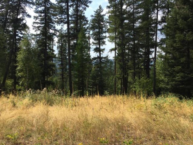 Lot 9 Wapiti Pines, Bigfork, MT 59911 (MLS #21711313) :: Loft Real Estate Team