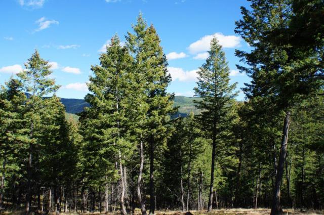 246 Forest Ridge Trail, Kila, MT 59920 (MLS #21711463) :: Brett Kelly Group, Performance Real Estate