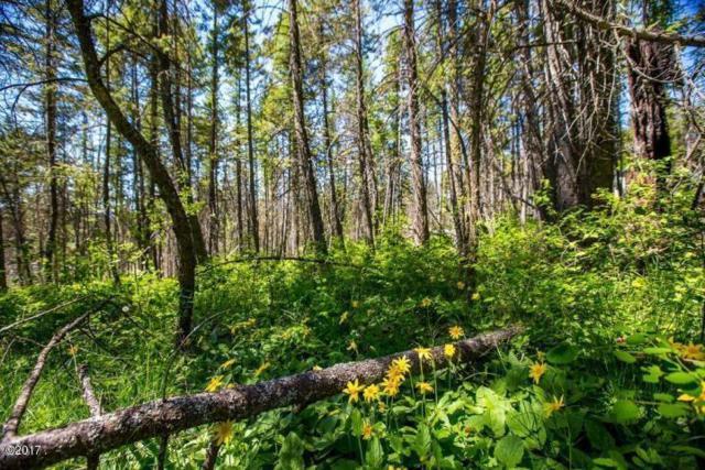 327 Deer Trail, Whitefish, MT 59937 (MLS #21711540) :: Loft Real Estate Team