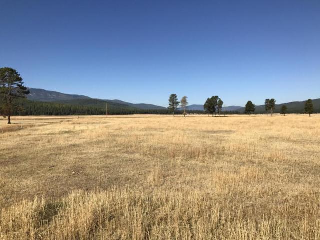 Nhn Lost Prairie Road, Marion, MT 59925 (MLS #21711980) :: Loft Real Estate Team