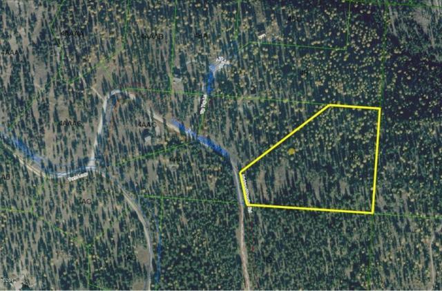 239 Highland Meadows Road, Kila, MT 59920 (MLS #21712057) :: Brett Kelly Group, Performance Real Estate