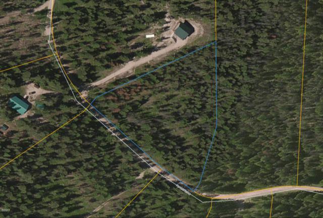 256 Pyramid Loop, Seeley Lake, MT 59868 (MLS #21712385) :: Loft Real Estate Team