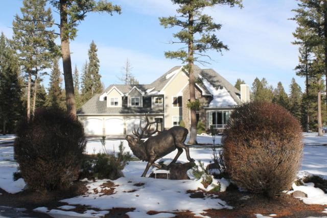 1163 Martin Creek Lane, Whitefish, MT 59937 (MLS #21713291) :: Loft Real Estate Team