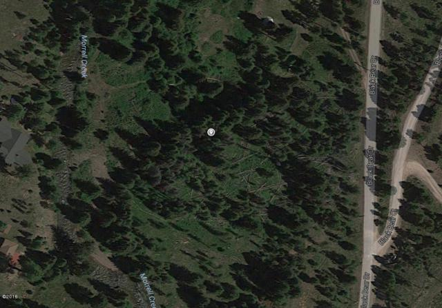 Nhn Black Bear Lane, Seeley Lake, MT 59868 (MLS #21713319) :: Loft Real Estate Team