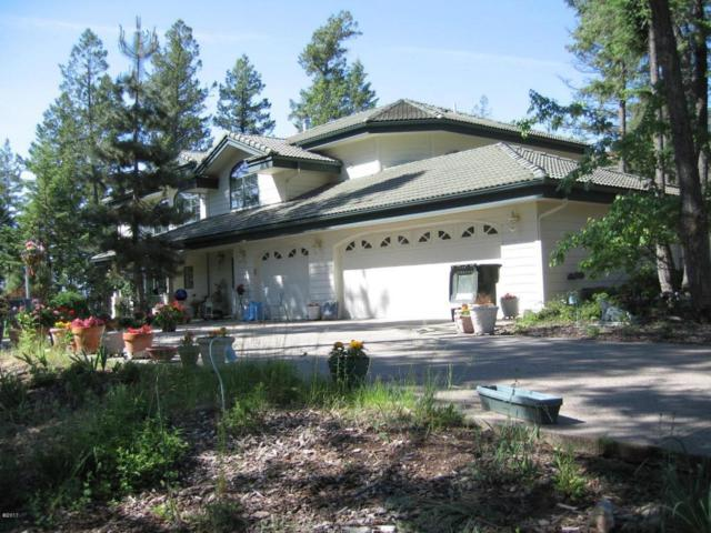 120 Eagle Bend Drive, Bigfork, MT 59911 (MLS #21713743) :: Loft Real Estate Team
