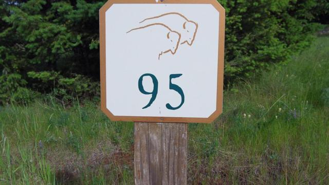 122 Walking Coyote Drive, Kalispell, MT 59901 (MLS #21800169) :: Brett Kelly Group, Performance Real Estate
