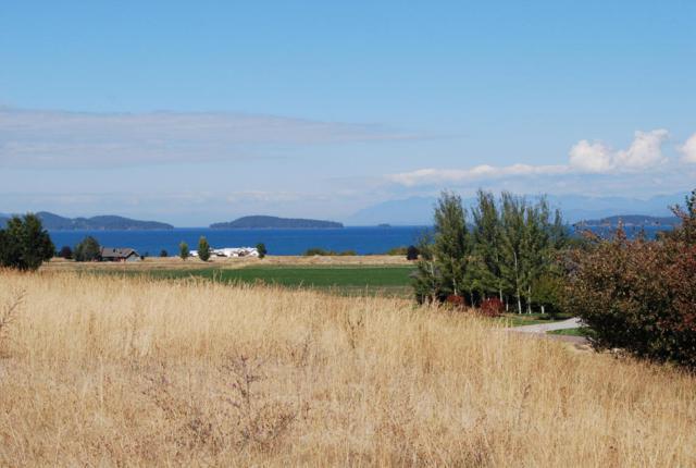 228 Pheasant Ridge, Polson, MT 59860 (MLS #21801011) :: Loft Real Estate Team
