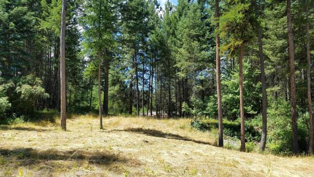 14357 Forest Drive, Bigfork, MT 59911 (MLS #21801208) :: Loft Real Estate Team