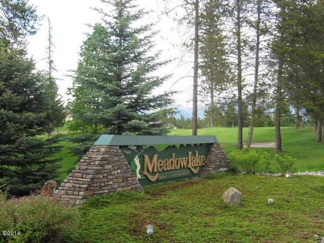 115 Spyglass Hill Loop, Columbia Falls, MT 59912 (MLS #21801271) :: Loft Real Estate Team
