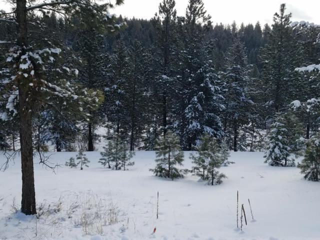 Lot 76 Kokanee Drive East, Rexford, MT 59930 (MLS #21801535) :: Loft Real Estate Team