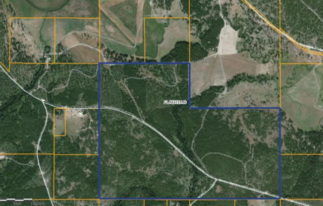 Woodyard Road, Marion, MT 59925 (MLS #21802982) :: Loft Real Estate Team