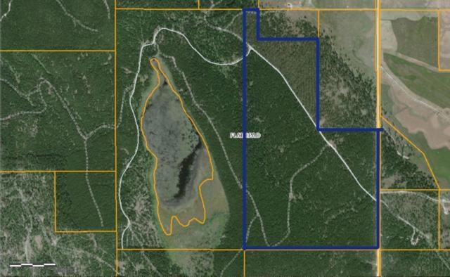 Lost Prairie Road, Marion, MT 59925 (MLS #21802991) :: Loft Real Estate Team