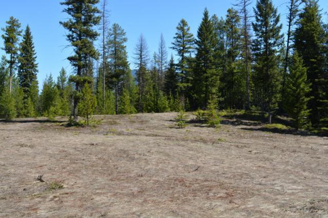 187 Glacier Hills Drive E, Martin City, MT 59926 (MLS #21804596) :: Loft Real Estate Team