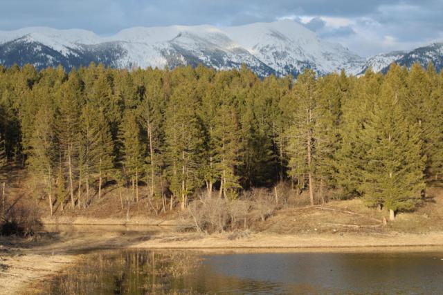 6575 Mt. Hwy.35, Bigfork, MT 59911 (MLS #21804997) :: Loft Real Estate Team