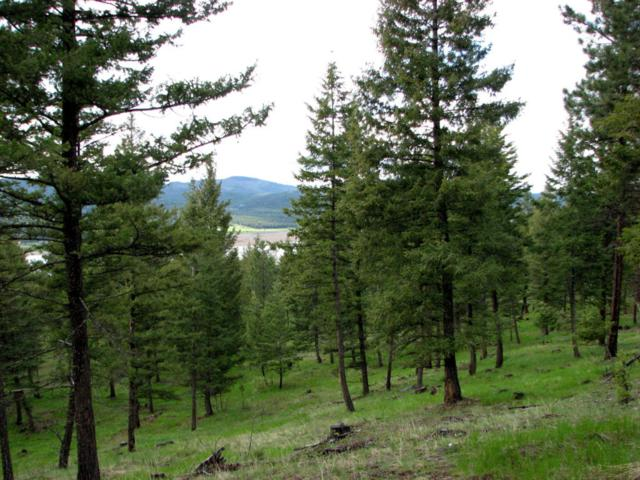 Parcel D Wapiti Ridge, Kila, MT 59920 (MLS #21808901) :: Brett Kelly Group, Performance Real Estate