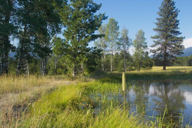 2543 Mt Highway 200, Trout Creek, MT 59874 (MLS #21809303) :: Brett Kelly Group, Performance Real Estate