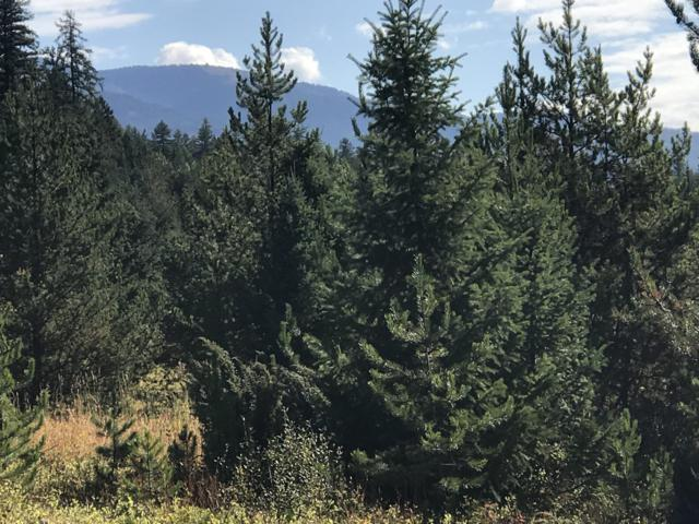 Lot 4 Lupfer Road, Whitefish, MT 59937 (MLS #21811974) :: Brett Kelly Group, Performance Real Estate