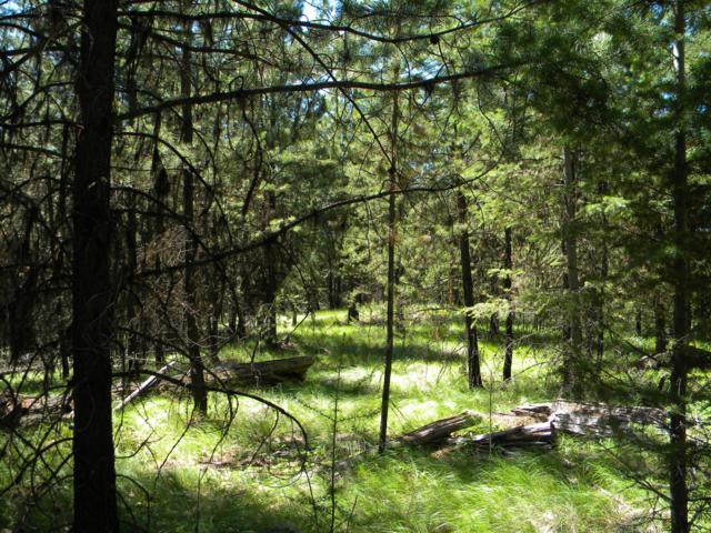 Nka Lower Lost Prairie Road, Marion, MT 59925 (MLS #21812249) :: Loft Real Estate Team