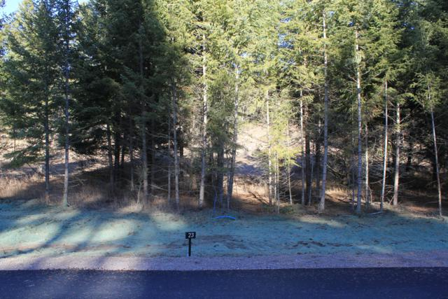 163 Crystal View Court, Lakeside, MT 59922 (MLS #21812614) :: Loft Real Estate Team