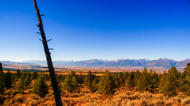 2343 Sapphire Ranch Trail, Corvallis, MT 59828 (MLS #21813060) :: Loft Real Estate Team