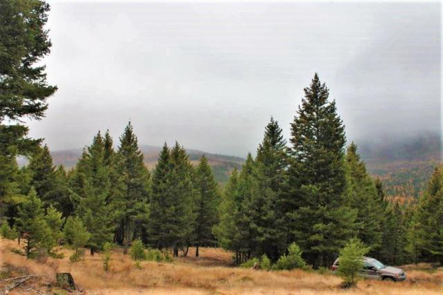 260 Wild Horse Trail, Kila, MT 59920 (MLS #21813275) :: Brett Kelly Group, Performance Real Estate