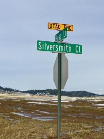 760 Silversmith Court, Helena, MT 59602 (MLS #21814503) :: Brett Kelly Group, Performance Real Estate