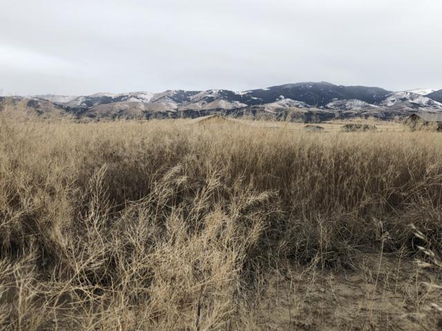 Lot 29 Ashley Drive, Townsend, MT 59644 (MLS #21814678) :: Brett Kelly Group, Performance Real Estate