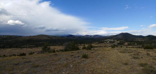 Tbd Elkhorn Game Ranch, Boulder, MT 59632 (MLS #21900072) :: Keith Fank Team