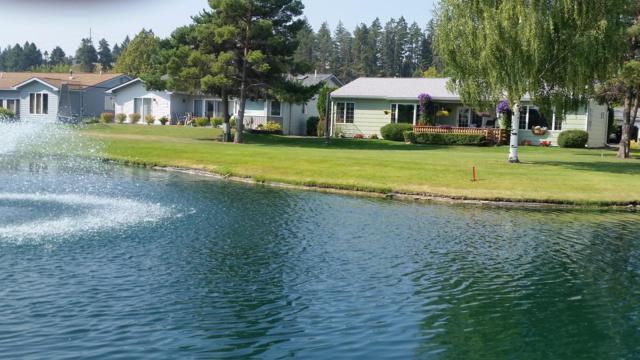 119 Trevino Drive, Kalispell, MT 59901 (MLS #21900125) :: Brett Kelly Group, Performance Real Estate