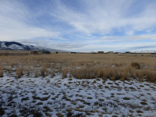 Lot 8 Grandview Loop, Townsend, MT 59644 (MLS #21900174) :: Andy O Realty Group