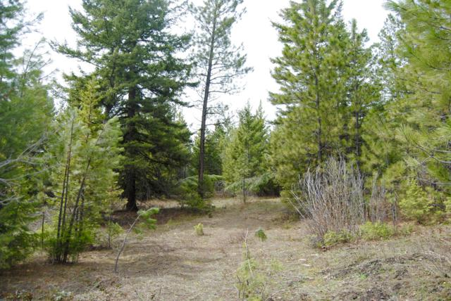 Lot 12 Two Hawks Lane, Potomac, MT 59823 (MLS #21900175) :: Brett Kelly Group, Performance Real Estate