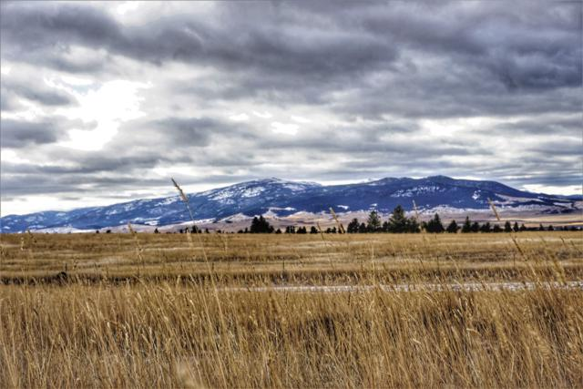 6085 Rosendale Road, East Helena, MT 59635 (MLS #21900193) :: Andy O Realty Group