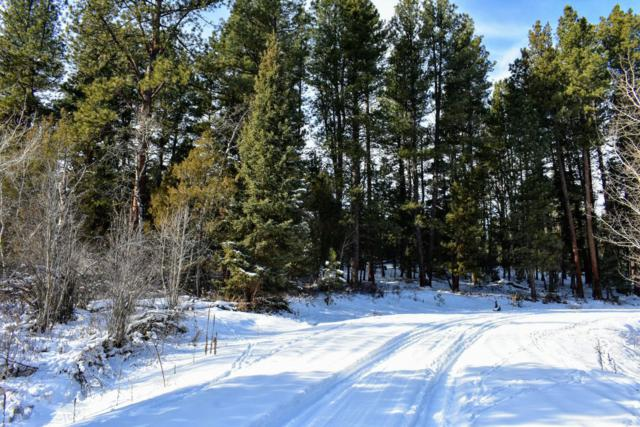 Tract 2b1 Stonewall Creek Road, Lincoln, MT 59639 (MLS #21900332) :: Andy O Realty Group
