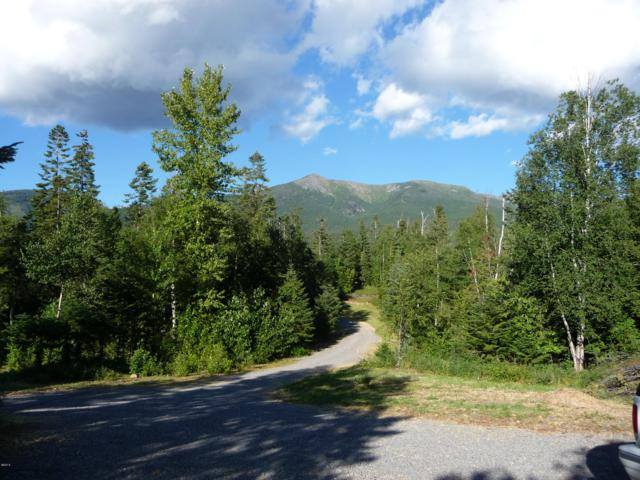 Lot 29 Orvis Evans Drive, Bigfork, MT 59911 (MLS #21900346) :: Brett Kelly Group, Performance Real Estate