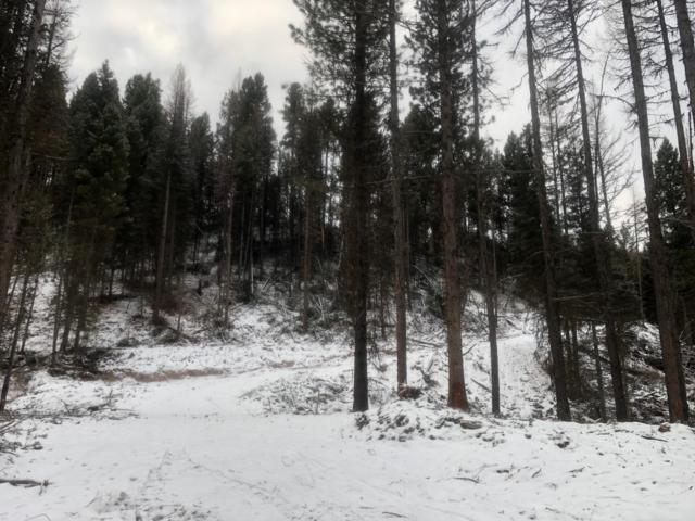Nhn Pyramid Loop, Seeley Lake, MT 59868 (MLS #21900726) :: Keith Fank Team