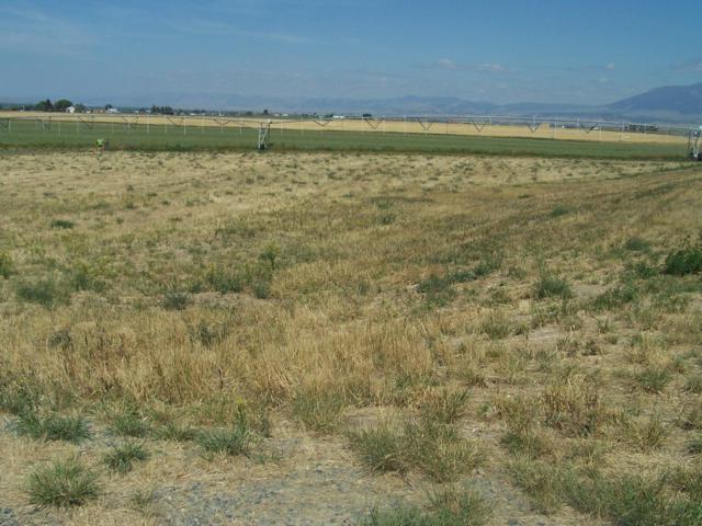 Lot 16 Windy Meadow Drive, Townsend, MT 59644 (MLS #21900804) :: Keith Fank Team